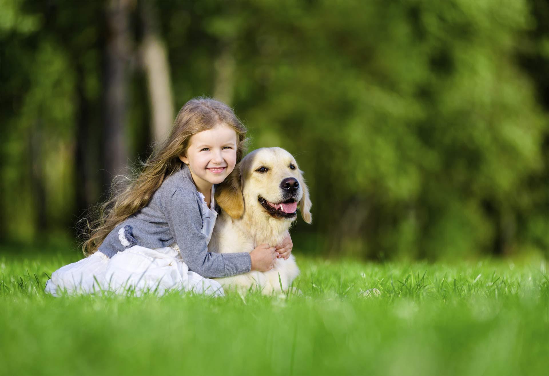 Los canes con energía más baja, sin importar la raza, suelen interactuar mejor con los niños, ya que son más pacientes