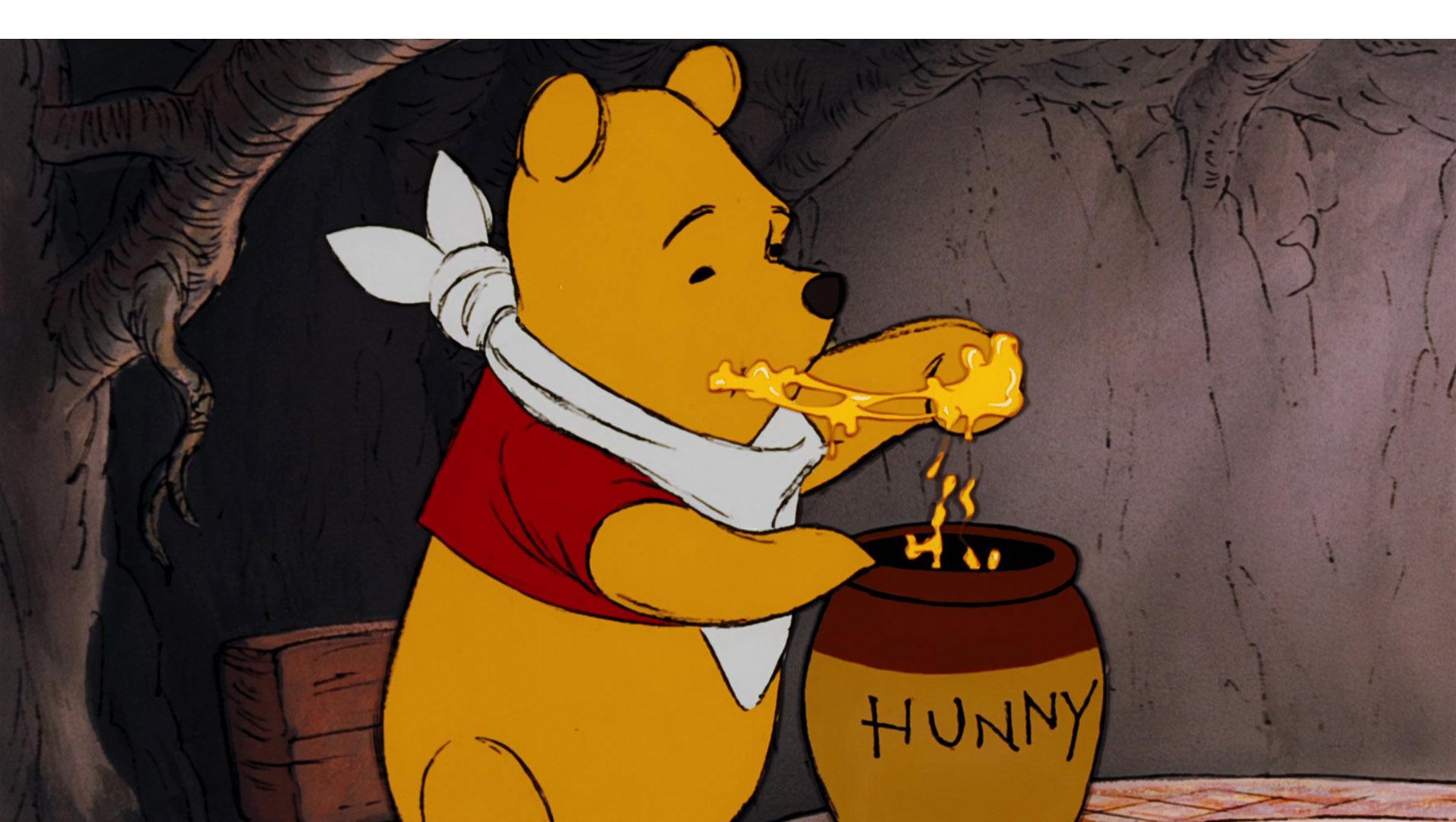Siempre vemos a los conejos comiendo zanahorias o a los osos comiendo miel, pero en realidad no es así