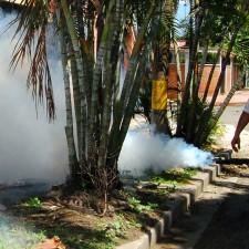 Activan plan contra el zika