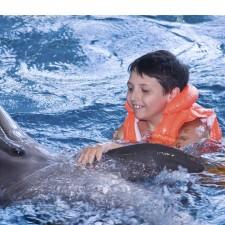Delfines ayudan a niños con Down