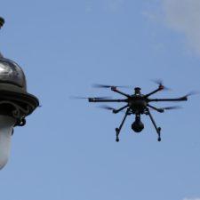 Piden regular drones que graban animales