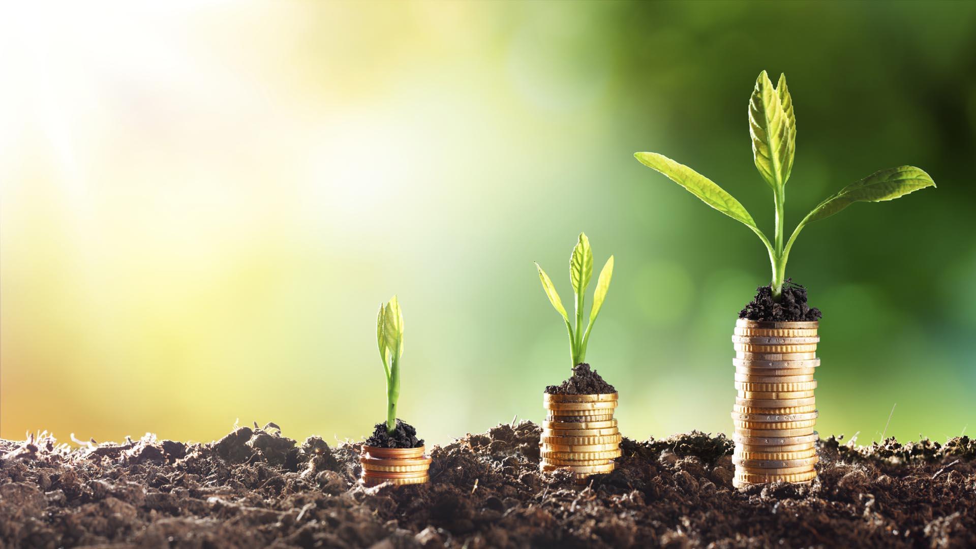 Ahorrar es una inversión a largo plazo en la que casi siempre saldremos beneficiados de la espera