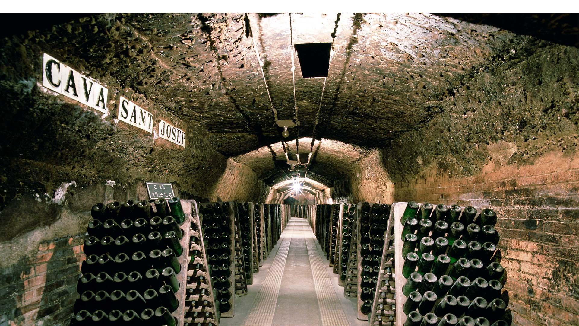 La empresa vinícola asegura que la nueva marca también será la de mayor calidad en el mundo