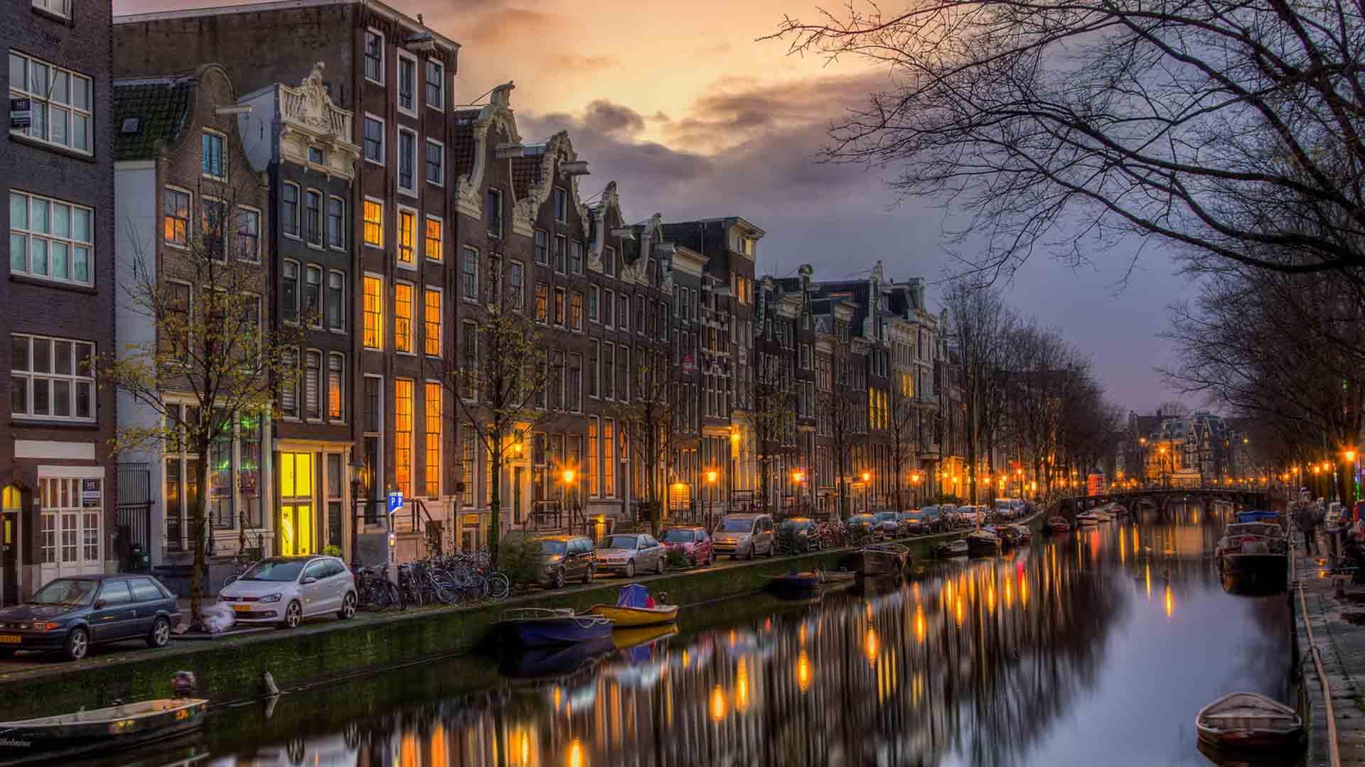 La biodiversidad en la capital holandesa recibió al topillo nórdico, la ardilla roja, los zorros, murciélagos y hasta focas