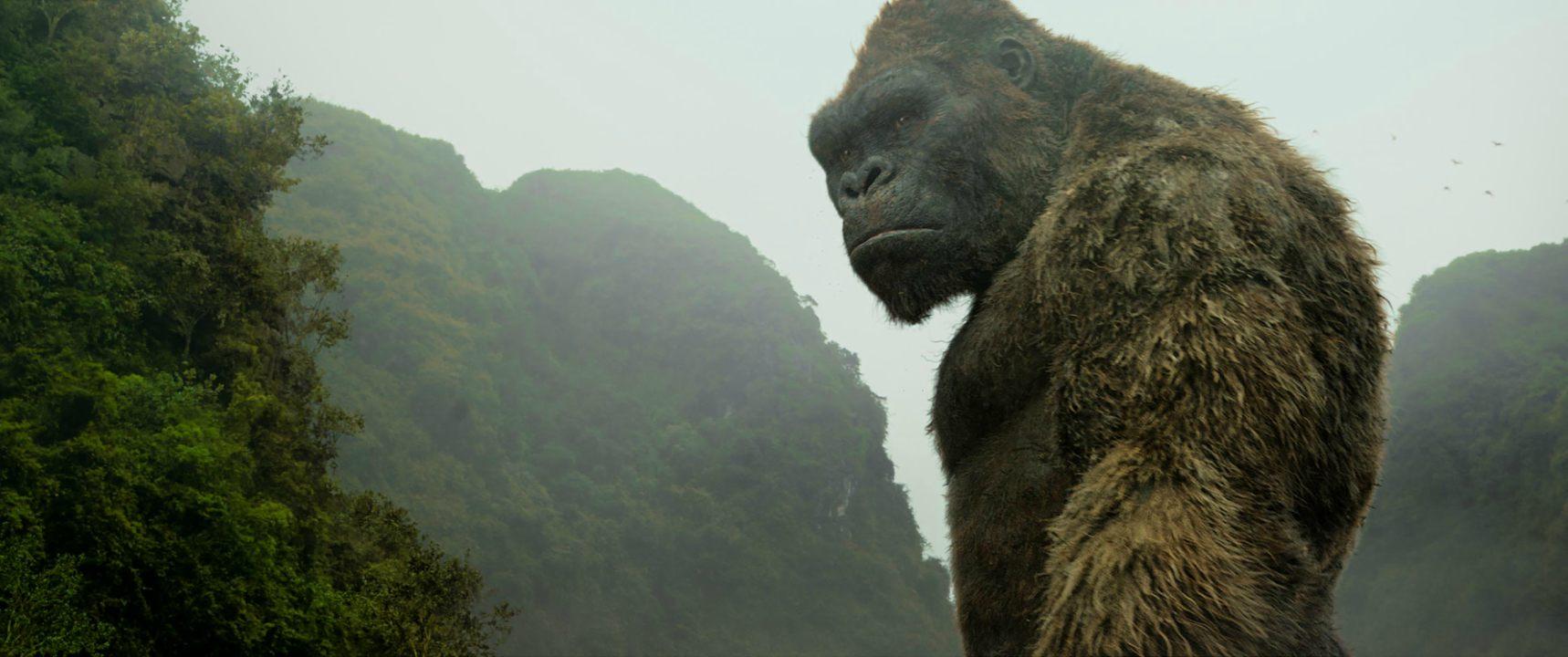 """Los fanáticos podrán disfrutar de una serie de historietas llamada """"Skull Island: Birth of Kong"""" que narrará lo sucedido luego del último film"""