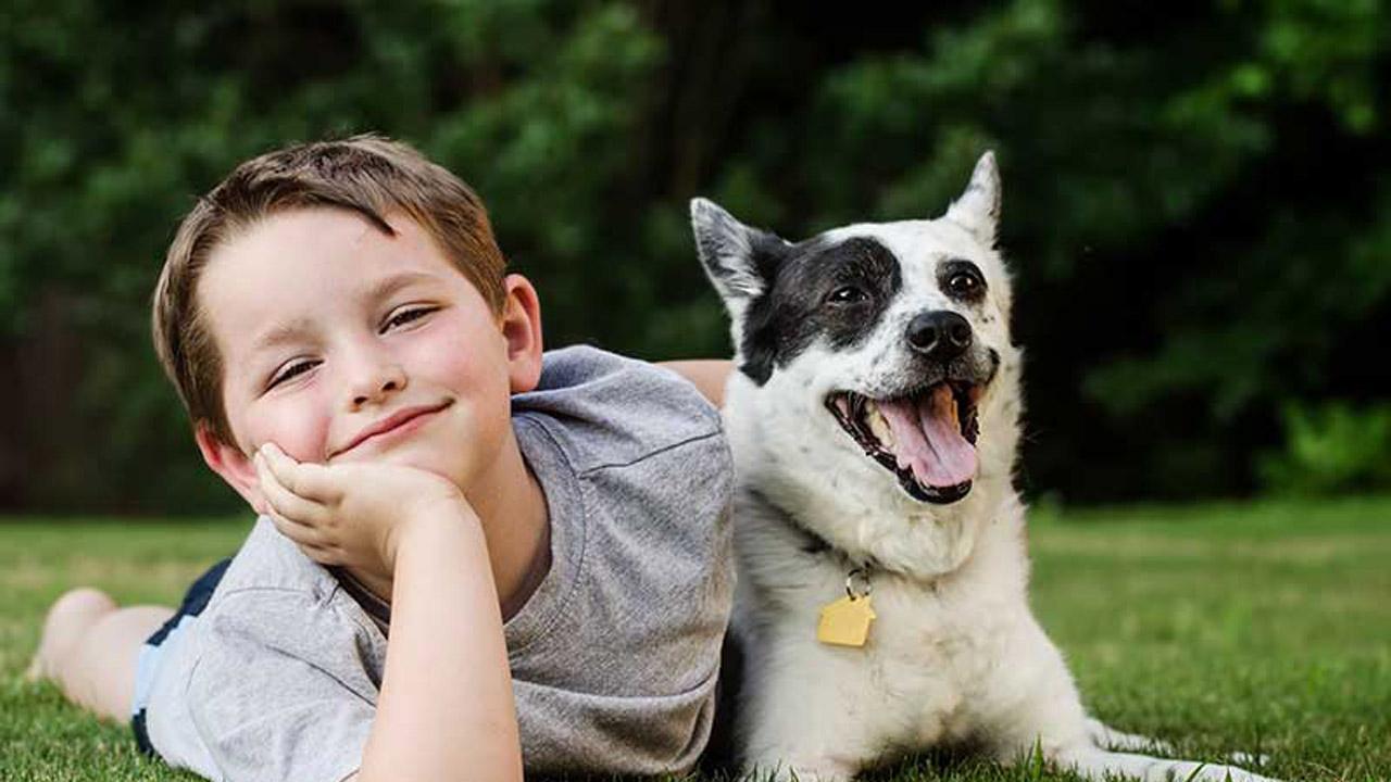 Jennifer Puglisevich, una psicóloga de la Universidad de Chile, dijo a la AP que los niños diagnosticados con autismo se caracterizan por tener dificultades para comunicarse e interactuar