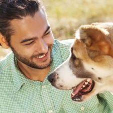 Perrito cuida a su dueño tras sufrir accidente