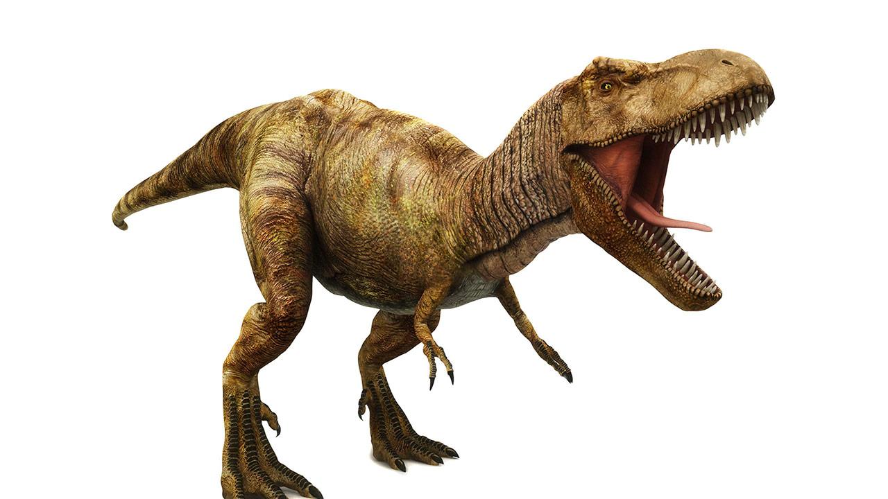 El dinosaurio coloso no habría tenido fuerza suficiente en sus patas para desplazarse a altas velocidades debido a su gran peso