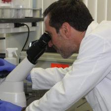 EE.UU. aprueba terapia génica contra el cáncer