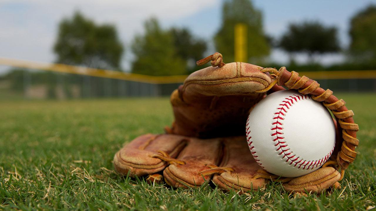 La federación de esta disciplina unió esfuerzos con el Comité Olímpico Venezolano para lanzar el programa Sembrando Beisbol