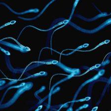 La píldora anticonceptiva masculina tuvo satisfactorios resultados