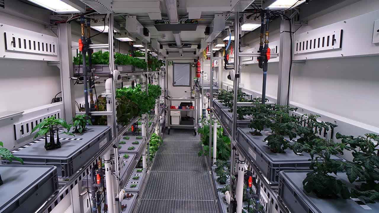 El Sumario - Se sembraron varios alimentos por medio de una tecnología súper avanzada que permitirá alimentar con productos frescos a los seres humanos en condiciones extremas o a los que se encuentran en el espacio
