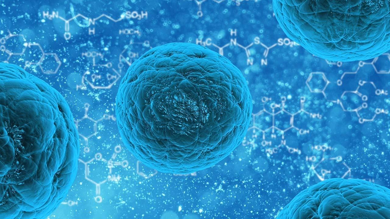 Ahora es posible que los investigadores generen mapas dinámicos de las interacciones de proteínas