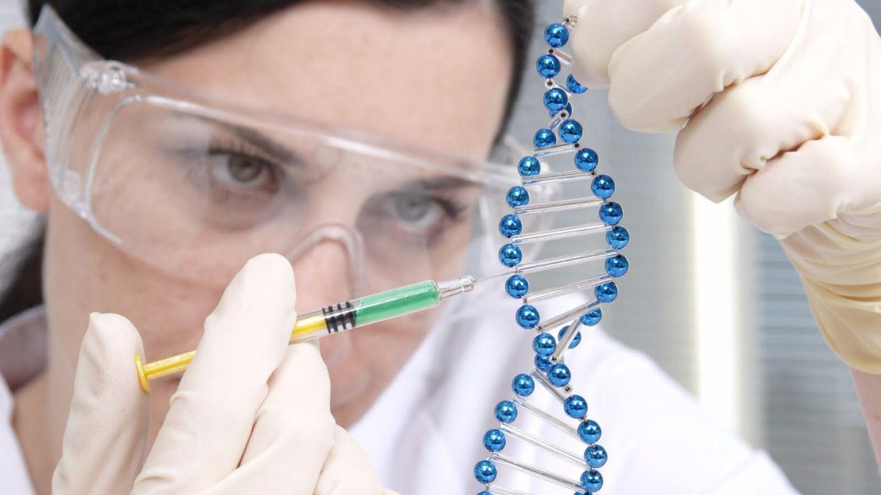 El proceso se llevó a cabo mediante la técnica novedosa CRISPR-Cas9