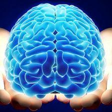 Diseñan dispositivo para neuroterapia o estudios cerebrales