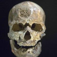 Encuentran cráneo humano de 35.000 años de antigüedad en Mongolia
