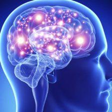 Afirman que el cerebro de las mujeres es más joven que el de los hombres
