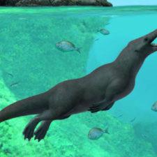 Descubren en Perú una antigua ballena de cuatro patas similar a una nutria