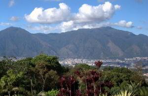 Bosqueterapia en montañas de Caracas