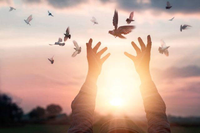Se trata de una metodología de transformación a nivel Subconsciente, que permite la resolución de cualquier tipo de conflicto, tal como lo describe la especialista Gloria Usuga