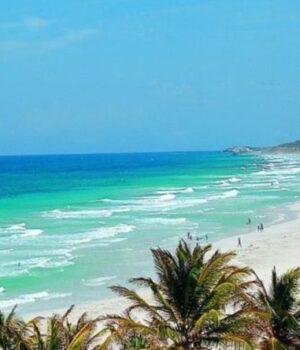 Avior Airlines apuesta a reactivar la actividad comercial de Margarita