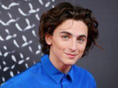 """El Sumario - Timothée Chalamet será """"Willy Wonka"""" en la nueva película de Warner Bros"""