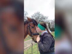 Entrenadora profesional compró un caballo por una libra y consiguió salvarlo