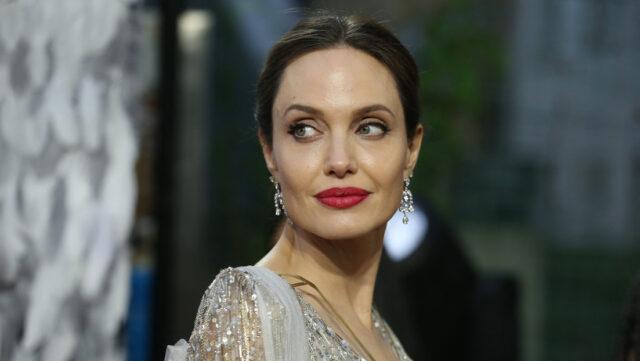 El Sumario - Angelina Jolie pidió acciones contra la violencia de género